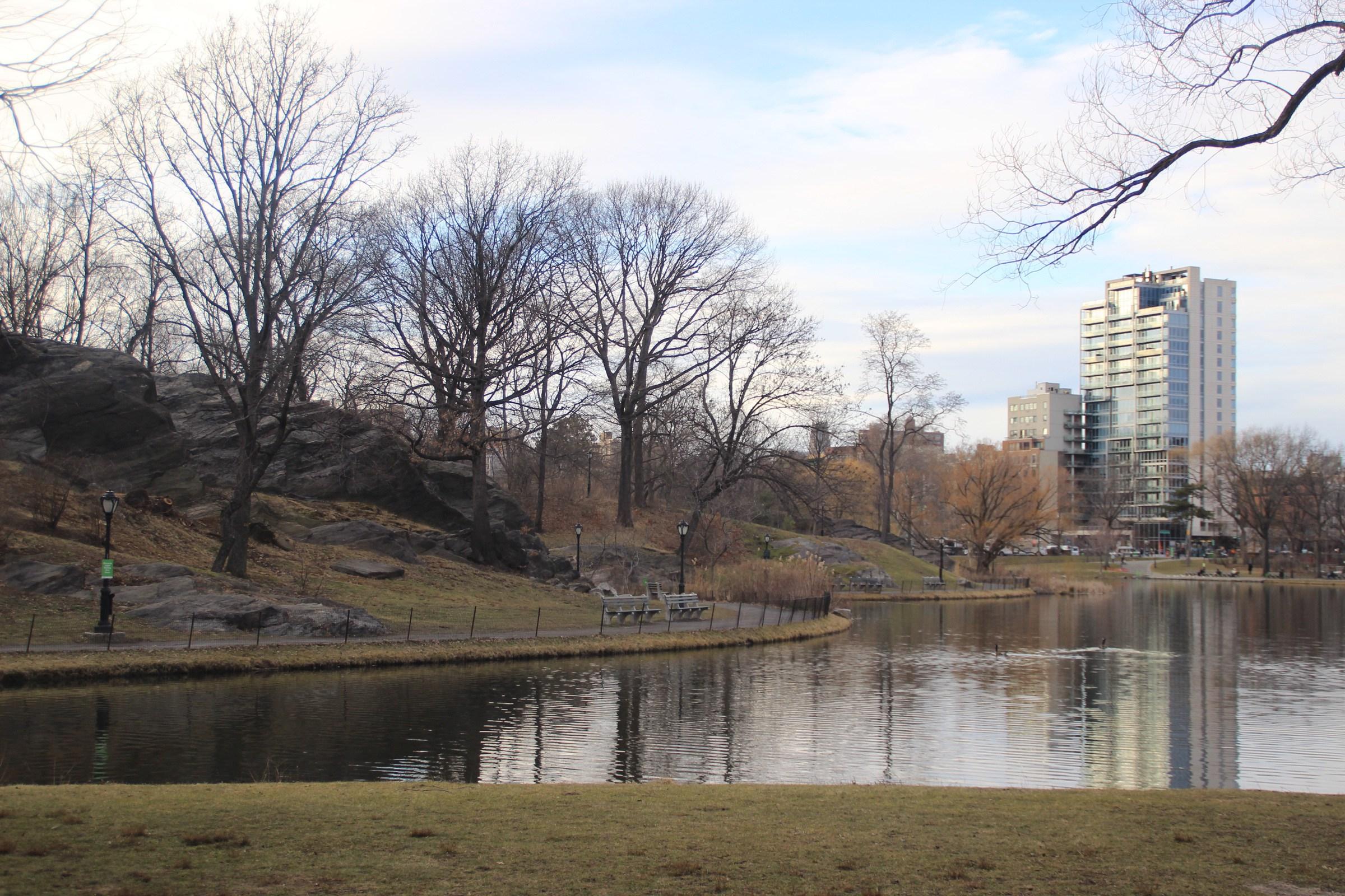 Картинки по запросу центральный парк фото туристов