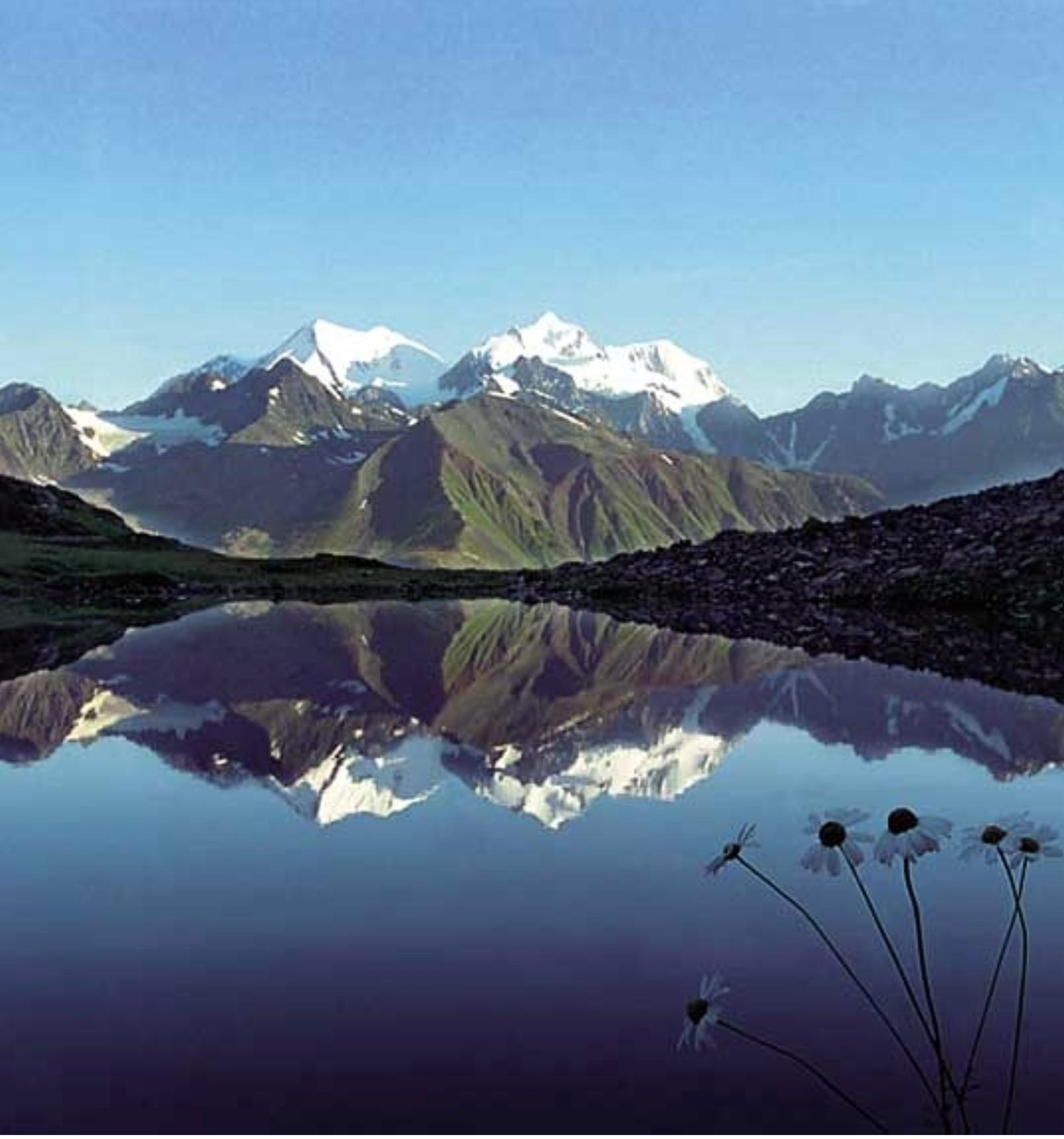 Картинки по запросу Телецкое озеро