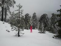 5 Необычных мест для катания на лыжах