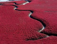 22 невероятно красочных места на Земле. Часть 1