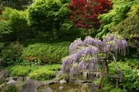 31 неизвестный японский сад умопомрачительной красоты. Часть 1