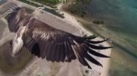 36 невероятных снимков с первого всемирного конкурса дрон-фотографии. Часть 2