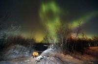 20 ошеломляющих снимков с фотоконкурса National Geographic