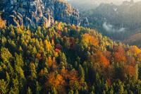 Потрясающие фотографии главной достопримечательности Саксонской Швейцарии