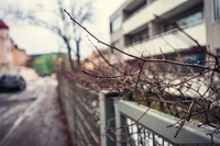 Финляндия, Хельсинки: район Эйра