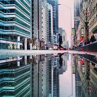 12 фантастических снимков мира, отраженного в лужах