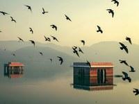 12 снимков умопомрачительных водоемов в Индии, которые заставляют забыть обо всем на свете