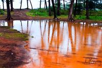 Сезон дождей в штате Гоа, как это бывает. Наш фото рассказ