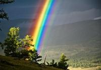 15 умопомрачительных снимков дикой природы России, от которых ты разинешь рот!