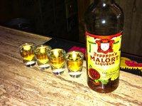 12 самых странных и опасных алкогольных напитков в мире