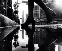 12 великолепных снимков Торонто, отраженного в магических зеркалах луж