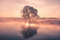 Белорусский фотограф просыпается рано утром, чтобы запечатлеть неповторимую красоту зимы