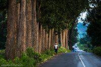 Танзания. Впечатления