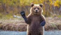 15 потрясающих снимков о нашем огромном и впечатляющем мире