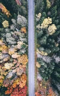 13 фото разных времен года в Швеции с высоты птичьего полета