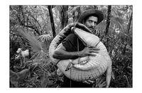 15 правдивых снимков о том, что значит жить в Латинской Америке