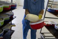 Как делают адыгейский сыр