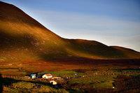 На этом острове живет больше карликовых пони, чем людей