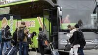 Фликсбус - зеленые автобусы дальнего направления