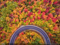 20 крутейших фотографий природы с конкурса National Geographic