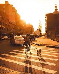 25 уютных снимков сентиментального Нью-Йорка, которые подарят тебе настоящее осеннее настроение