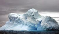 В Антарктиде создадут крупнейший морской заповедник