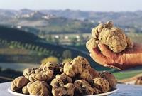 10 самых дорогих продуктов питания из разных стран мира