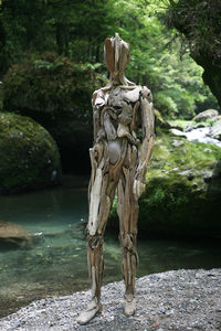 В японском лесу художник создает из коряг жуткие скульптуры, от которых стынет кровь