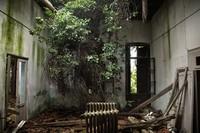 Повелья — зловещий остров чумы, куда хотят пригласить туристов