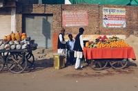 Джайпур — город тысячи слонов