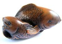Ученые доказали, что рыбы умеют узнавать друзей по «лицам»