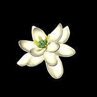 Как выглядели цветы 100 миллионов лет назад