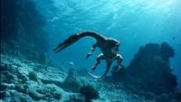 О чем рассказал «главный дух Волги» — плиозавр, найденный на берегу реки