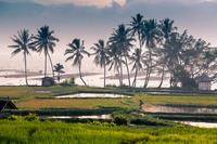 Волшебство загадочного острова Суматра