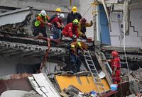 Хвостатые ангелы-спасители: как происходил поиск людей под завалами в Мексике