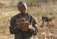 Дети ловят и жарят мышей — самый популярный бизнес в Зимбабве
