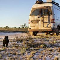 Парень уволился с работы, продал все и отправился в путешествие со своим котом