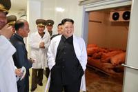Человек, который смеется: лучезарный Ким Чен Ын на снимках официальной пропаганды