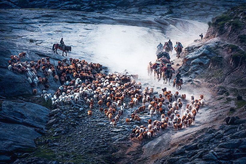 20 мощных снимков конкурса Siena International Photo Awards
