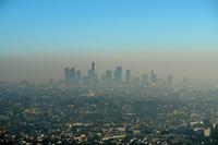 Почему образуется смог в мегаполисах, и как от него защититься