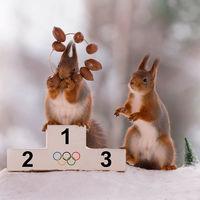 Фотограф снимает белок в образах олимпийских спортсменов