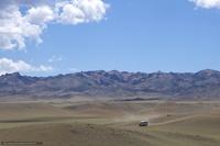 Облепиха против пустыни Гоби: уникальный проект Монголии