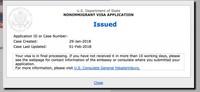 Как получить американскую визу в России без собеседования