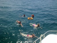 Чистейшее Чёрное море