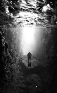 Великолепные черно-белые снимки подводной жизни, от которых захватывает дух