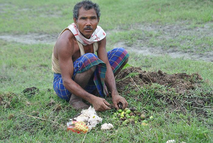 40 лет каждый день мужчина сажает на острове деревья, спасая его от исчезновения  Planting-trees-40-years-desolate-majuli-island-jadav-payeng-india-5-5b6a98ff299a3__700