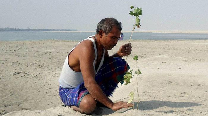 40 лет каждый день мужчина сажает на острове деревья, спасая его от исчезновения  Planting-trees-40-years-desolate-majuli-island-jadav-payeng-india-10-5b6a9a3f85b42__700