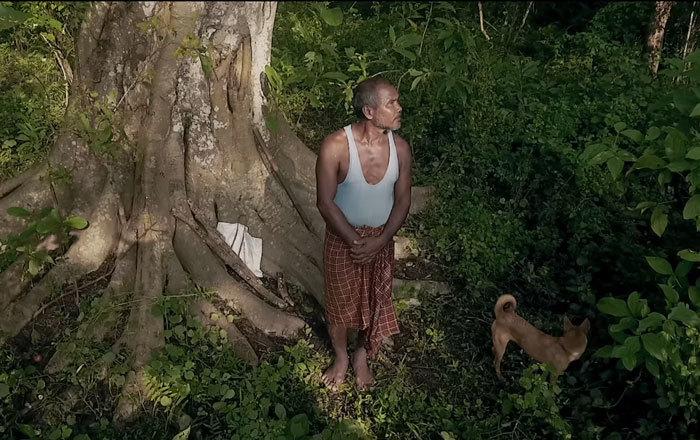 40 лет каждый день мужчина сажает на острове деревья, спасая его от исчезновения  Planting-trees-40-years-desolate-majuli-island-jadav-payeng-india-15-5b6a9a513210a__700