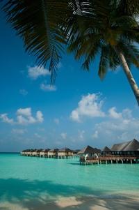 По экватору в The Sun Siyam Iru Fushi Maldives