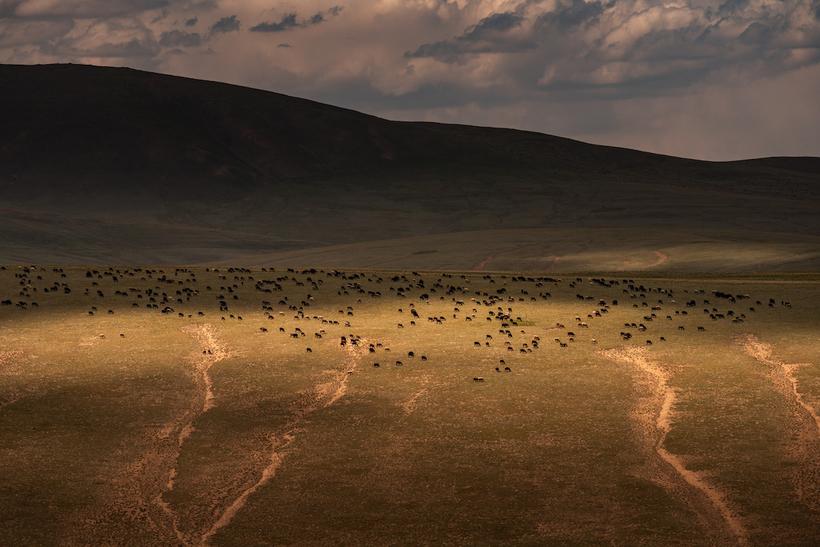 Голландский фотограф повидал многое, но по-настоящему его ошеломила Киргизия
